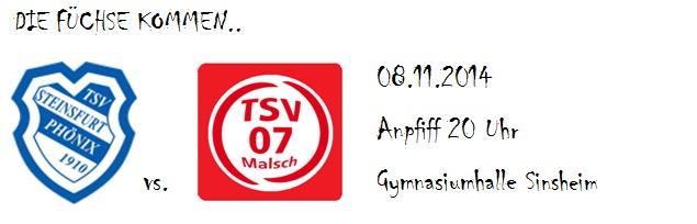 TSV_Steinsfurt