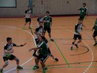 TVB-Handballer holen, trotz widriger Umstände, einen Punkt in Eggenstein