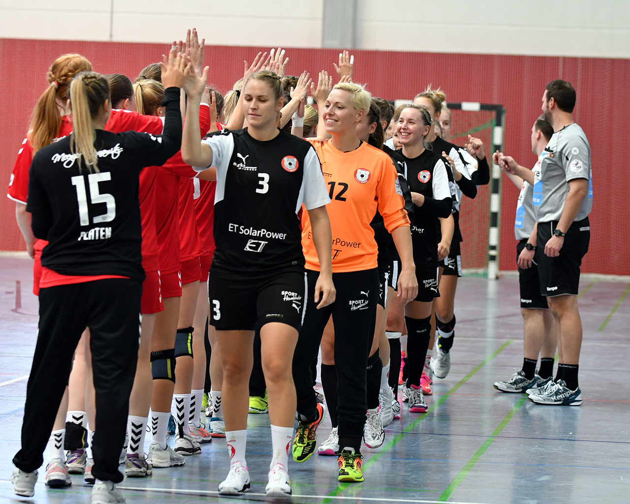 Handball Ligen Baden Württemberg
